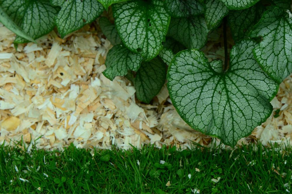 Paillage Jardin  Vente en ligne de paillage naturel pour  ~ Copeaux De Bois Paillage