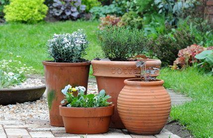 Paillage jardin vente en ligne de paillage naturel pour for Conseil sur les plantes